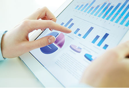 AaaS: Harnessing the Capabilities of Business Data Analytics