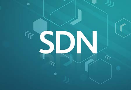 What Does the Future of SDN Look Like?
