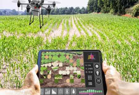 How Agriculture Sector Can Leverage IoT