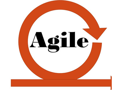 Agile Methodologies in Large Projects