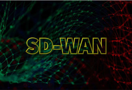 Industries are Experiencing Rapid Growth after SD-WAN Adoptions. Know How!