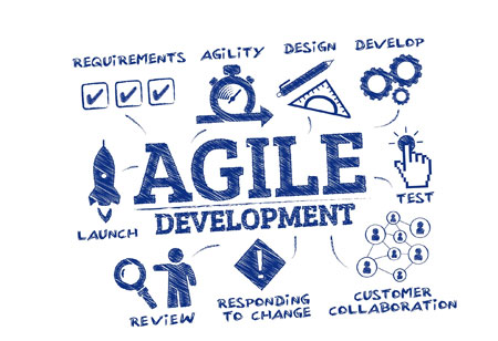Learn How to Create an Agile Environment